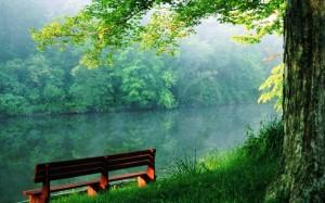 Beauty-of-nature-random-4884759-1280-800 (1)